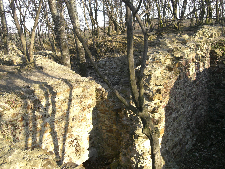 Руины замка в Кунратицком лесу