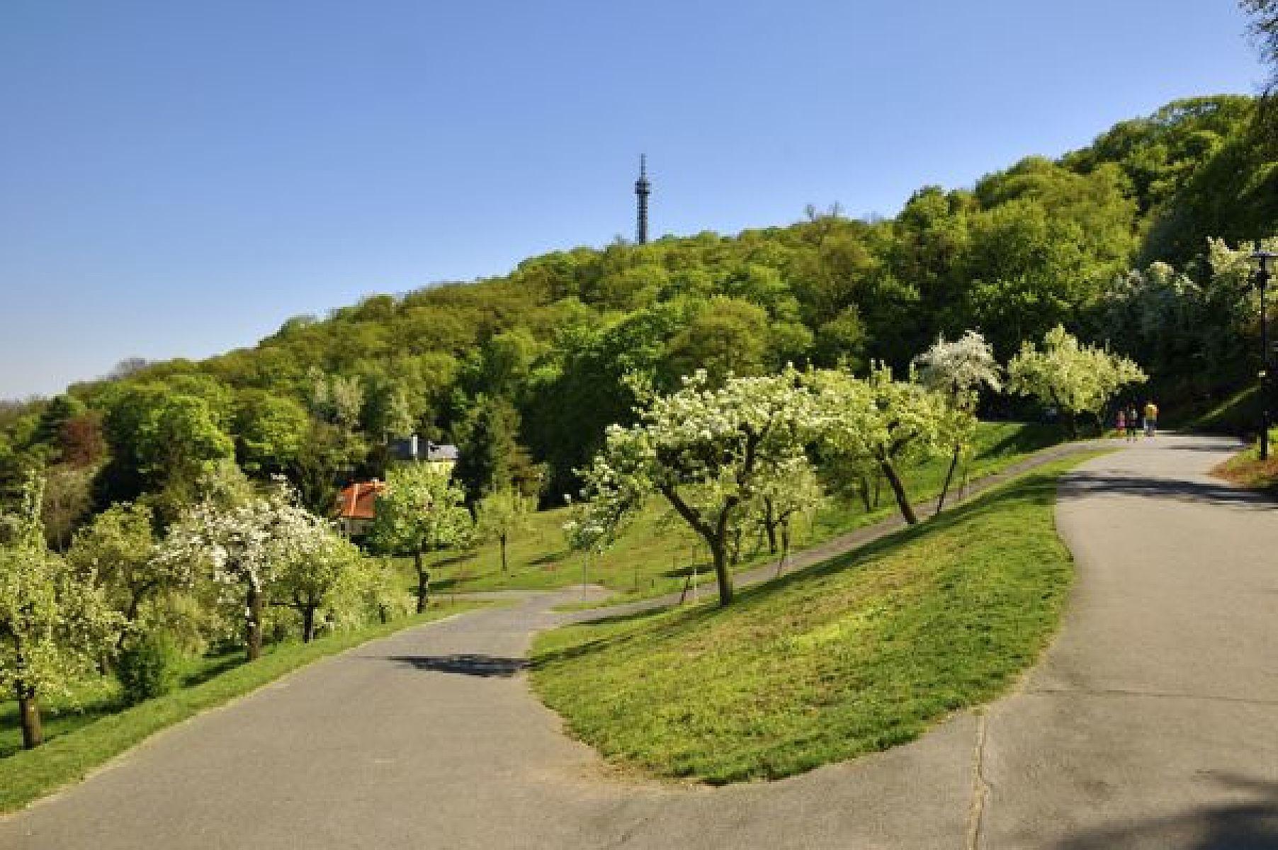 Петршин холм