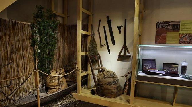 Экспонаты Музея шоколада