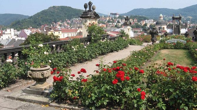 Розовый сад в замке Дечин